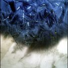 Blue & White Abstract by sedge808