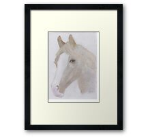 Portrait of a Horse for JD Framed Print