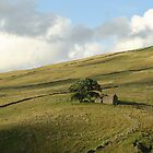 Yorkshire Barn overlooking Dentdale by YorkshireMonkey