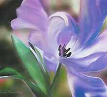 Purple Flower by Connie Sonnenberg