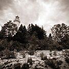 Cana Island Lighthouse by Steve Leath