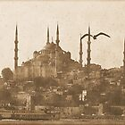 Blue Mosque - Istanbul by LisaRoberts