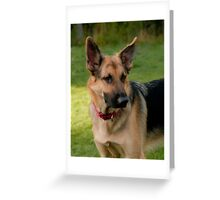 The Lovely Gracie Greeting Card