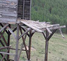 Ramshackle Mine Shaft by Beth Moshier