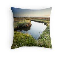 Mirror Mirror on the Marsh Throw Pillow
