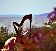 Music on Green Lake  by MWags