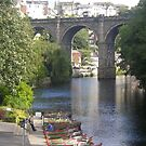 The River Nidd, Knaresborough by Peter Telford