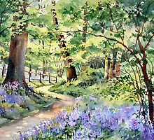 Bluebell Wood by Ann Mortimer