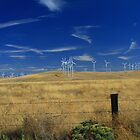 Wind Energy Farm by AdventureGuy