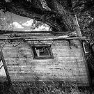 Tree House by Bob Larson