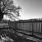 Picket fence by Adriano Carrideo