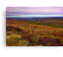 North Yorks Moors National Park Canvas Print