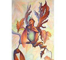 Maple Leaf Fairy Dragon Photographic Print