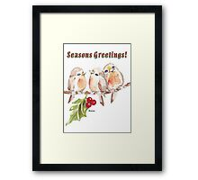 3 Little Birds - Season's Greetings! Framed Print