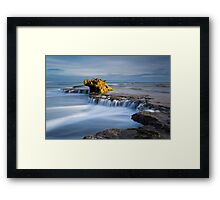 Rear its ugly head.. Framed Print