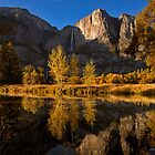 Fall in Yosemite National Park by David Orias
