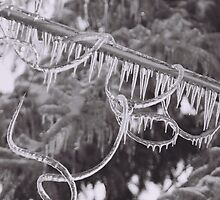 Ice Storm by Susan LeRose