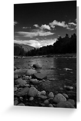 Swift River in High Contrast by Jenny Webber
