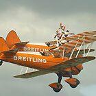 Breitling Wingwalkers 2010 by Yvonne Falk Ponsford