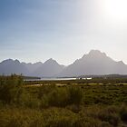 Teton Evening by Kim Barton