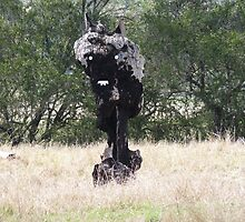 The Black Stump ...come to life.. by Virginia McGowan