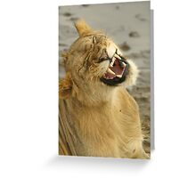 Simba smile Greeting Card