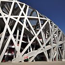 The Birds Nest - Beijing by darylbowen