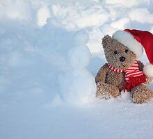 Bear making a Snowman by Albert1000