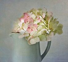 Blue jug with hydrangeas by inkedsandra