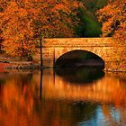 Seasons by Gareth Jones