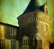 French Chateau by TotoPhotos