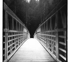 Bridge by Julian Nelson