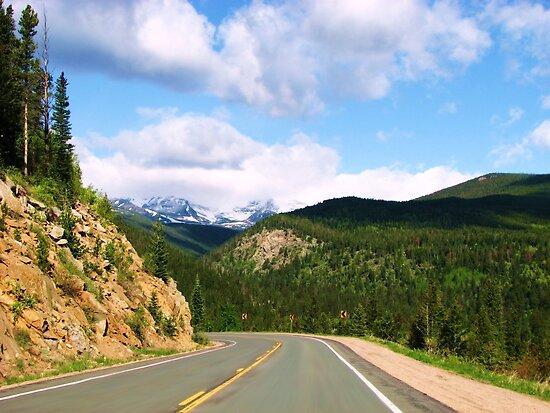 Crusing Colorado by NatureGreeting Cards ©ccwri