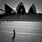 sydney opera house iii by doug riley