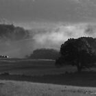 Misty Fog in the Valley Black and White Version by BarbWireNRoses