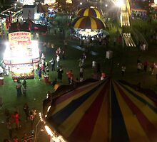 Ferris Wheel View - Pike Co MS Fair 2010 by Dan McKenzie