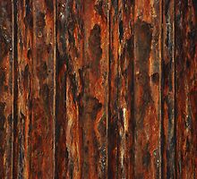 Wall of Rust by Celia Strainge