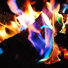 Vivid Color Fire by Tori Snow