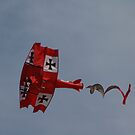 The Red Baron Over Bondi Beach by muz2142