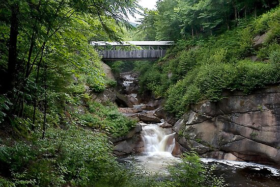 Sentinel Pine Bridge, Franconia Notch SP New Hampshire by Eros Fiacconi (Sooboy)