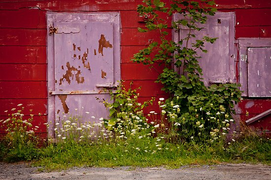 THE PURPLE DOOR- Nova Scotia, Canada by Andrianne
