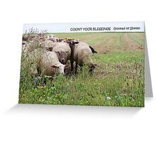 Count Your Blessings... Greeting Card