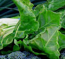 Gorgeously Green Veg by Janie. D