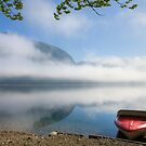 Lake Bohinj , Triglav National Park , Slovenia by Ian Middleton