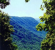 scenic mountain overlook babcock wv by fotoflossy