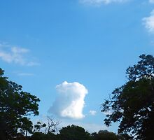 Little floating muffin cloud by ♥⊱ B. Randi Bailey
