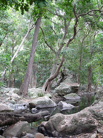 Jourama Falls by elsha