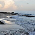 Beach in Cozumel near sunset by mltrue