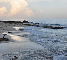 Beach in Cozumel near sunset by mltrue