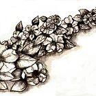 Magnolias by plunder